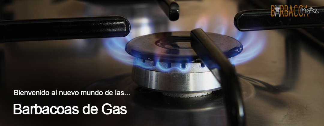 Barbacoas de Gas BarbacoaFriends
